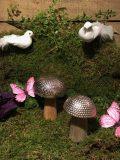 champignons fer martele
