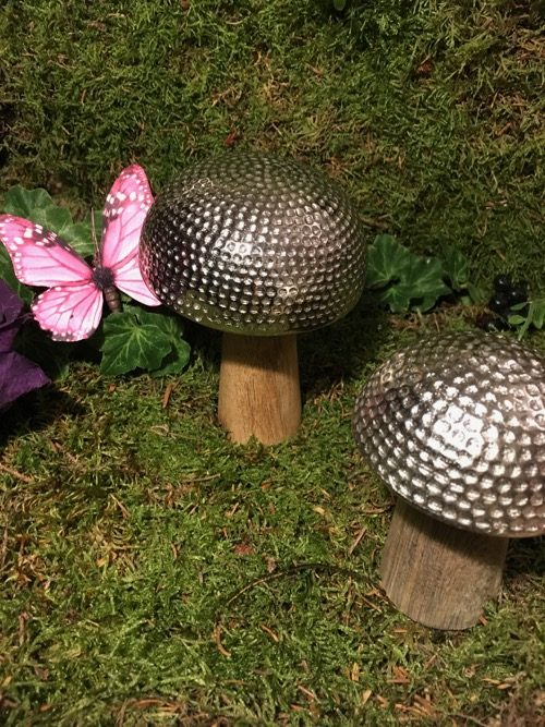 champignons fer martele 2