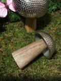 champignons fer martele 3