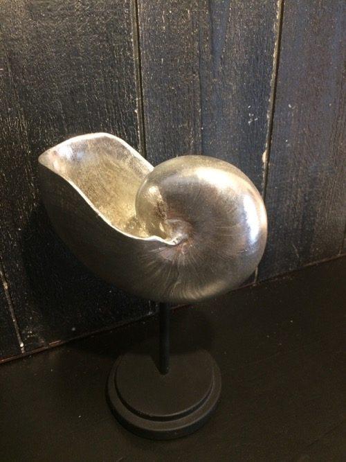 coquillage argenté 2