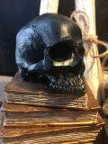 skull tête de mort noire 2