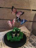 globe papillons 2