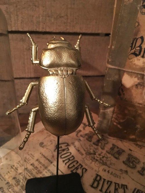 globe scarabée 3