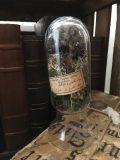 globes d'herboristes 3