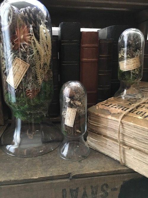 globes d'herboristes