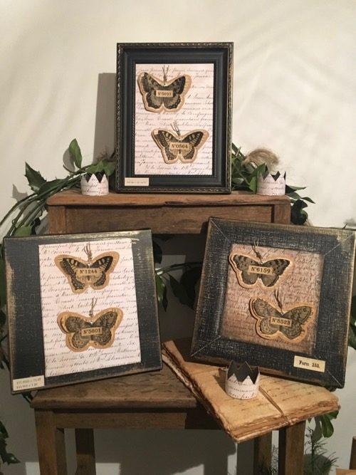 tableau cabinet de curiosites entomologie