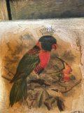 tableau oiseau rouge gorge royal couronne 3