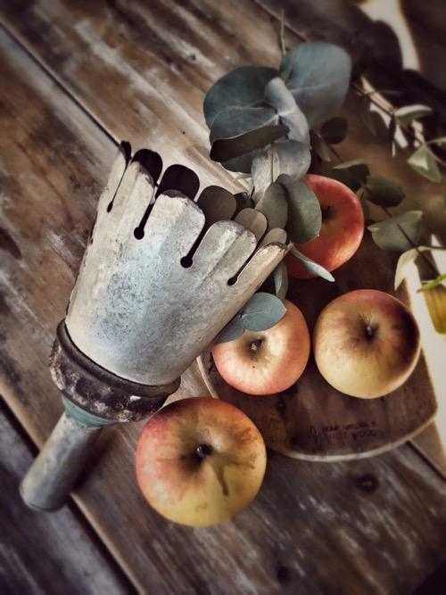 cueille-fruits merci louis